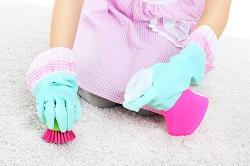 Ouality Carpet Cleaning in Sutton, SM2